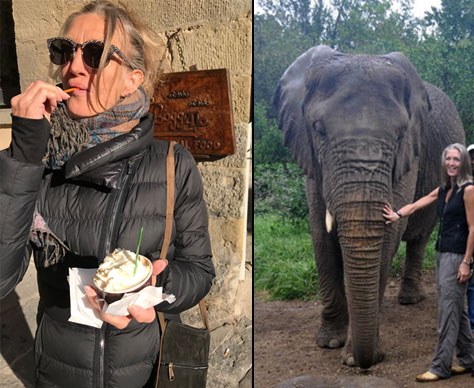 kathleen with an elephant and eating gelato